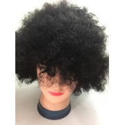 NATURAL AFRO WIG